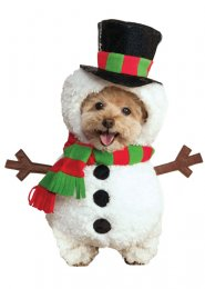 Christmas Walking Snowman Pet Dog Costume