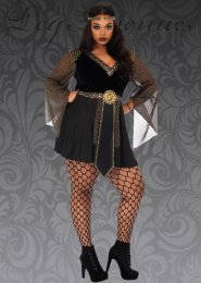 Womens Plus Size Warrior Princess Knight Costume