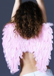 Baby Pink Feather Angel Wings