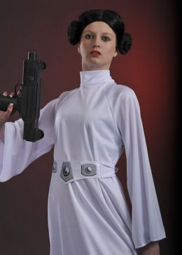 Ladies Petite Star Wars Princess Leia Costume