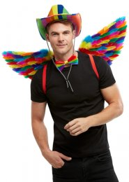 Rainbow Multi-Coloured Feather Angel Wings
