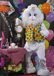 Adult Deluxe Mad White Rabbit Costume