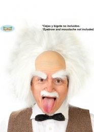 Mens Einstein White Mad Scientist Wig
