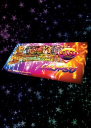 Bonfire Party Calypso Firework Selection Box
