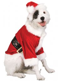 Christmas Santa Claus Pet Dog Costume