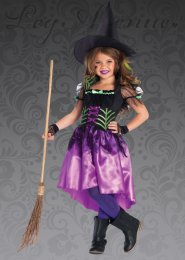 Childrens Leg Avenue Spiderweb Witch Costume