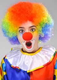 Circus Clown Rainbow Curly Pop Wig