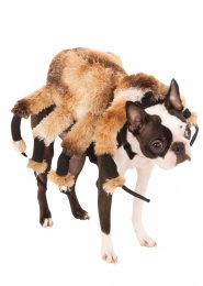 Halloween Hairy Spider Pet Dog Costume