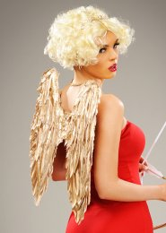Valentines Day Cupid Gold Feather Angel Wings