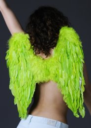 Lime Green Feather Angel Wings