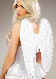 Small Diamante Sparkle White Feather Angel Wings