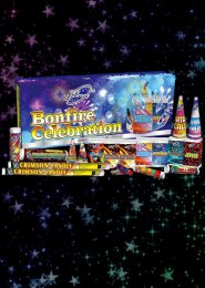 Bonfire Celebration Assorted Firework Selection Box