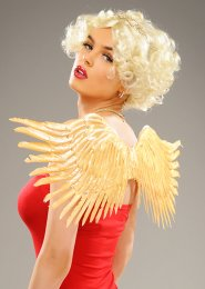 Valentines Day Gold Feather Cupid Wings