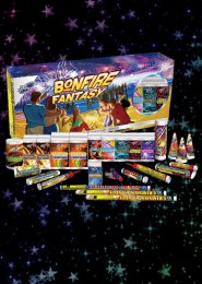 Bonfire Fantasy Assorted Firework Selection Box
