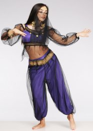 Petite Size Purple Harem Girl Arabian Princess Costume