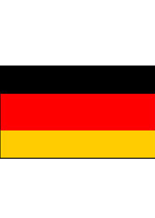 German Flags on Sticks Pk6 12975GER : Struts Party ...