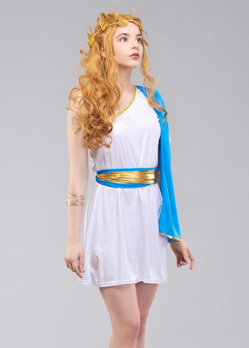 Ancient Roman Toga Ladies Costume