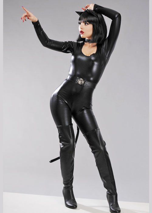 Sexy Catwoman Black Cat Costume & Sexy Catwoman Black Cat Costume Sexy Catwoman Black Cat Costume