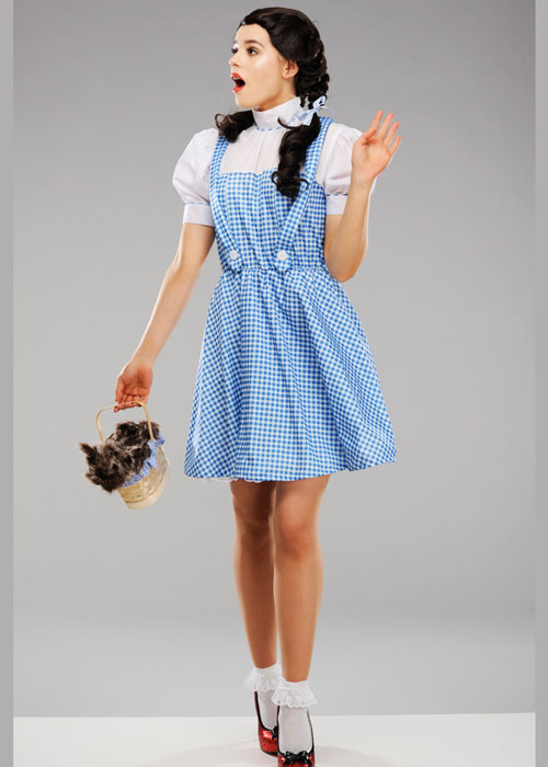 Womens Wizard Of Oz Dorothy Costume Ebay  sc 1 st  Meningrey & Dorothy Wizard Of Oz Costume Ebay - Meningrey