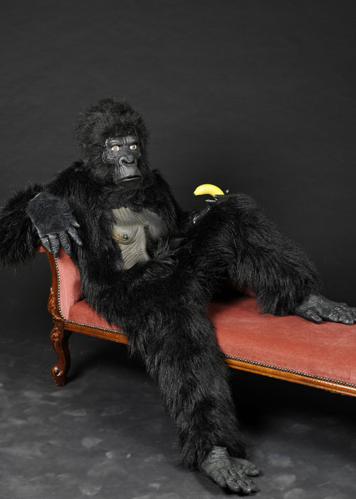 https://www.struts.co.uk/party-fancy-dress-shop/images/A1-gorilla-costume.jpg