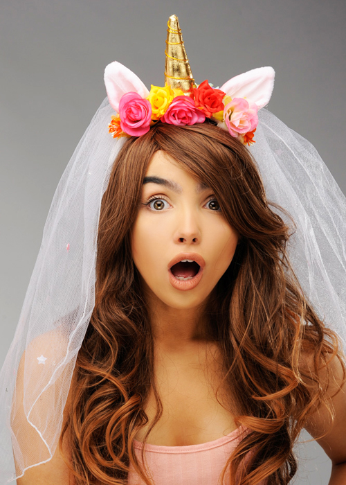 Hen Party Bride To Be Unicorn Horn Veil