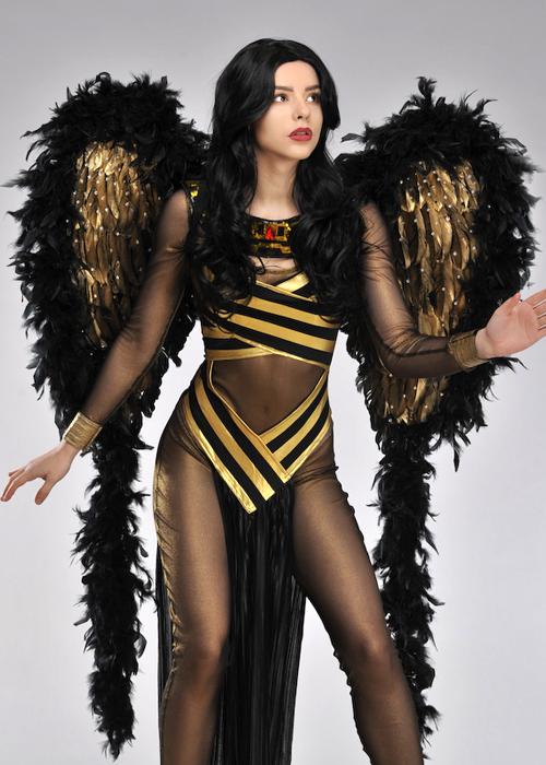 d99cebdcae0 Deluxe Diamante Black And Gold Zodiac Festival Wings